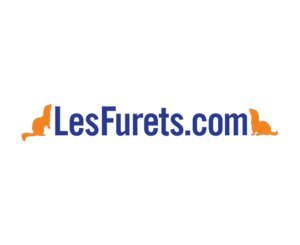 LesFurets.com launches on energy to accelerate market opening