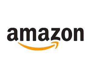 Bosses and elected officials ask Amazon to return to New York