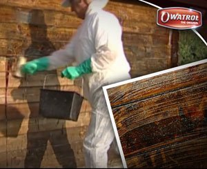 Renovate a garden shed with Owatrol® AQUANETT and NET-TROL