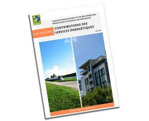 The Federation of Environmental Energy Services (FEDENE) makes 11 proposals for a green revival