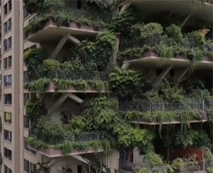Buildings in China overgrown with plants