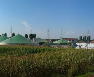 The government is considering extra-budgetary support for Biogas