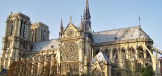 The oak restoration project of the Notre-Dame frame is validated