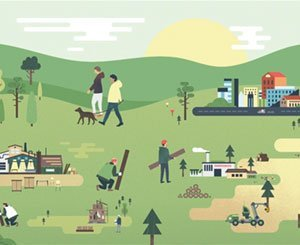 Towards the circular economy of the wood industry