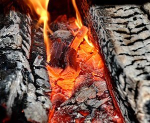 The government proposes an action plan to reduce pollution from domestic wood heating