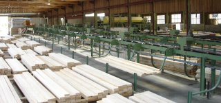 """Timber manufacturers want to limit oak exports to China to """"save"""" French sawmills"""