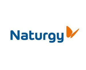 Green light from the Spanish stock exchange authorities for a partial takeover bid for Naturgy