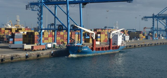 """Maritime infrastructures should """"mimic"""" nature to preserve biodiversity"""