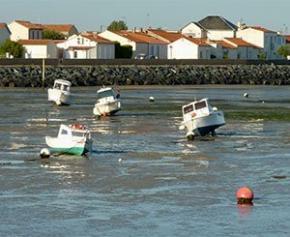 Neuf ans après la tempête Xynthia, un village ostréicole de Charente-Maritime renait