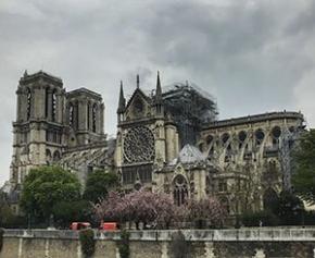 Le chantier de Notre-Dame suspendu à cause du Coronavirus