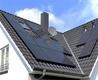 LG Solar distribue des cerisiers à ses clients dans le cadre de son Plan Climat - Neutralité Carbone 2030