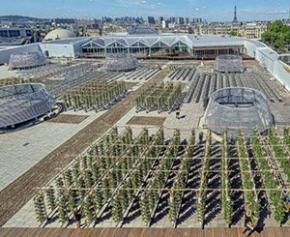 Ouverture de Nature Urbaine, la plus grande ferme urbaine en toiture d'Europe