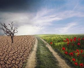 """La relance """"verte"""" à la recherche du PIB de demain"""