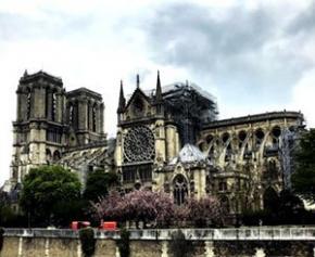"""Fin du démontage de l'échafaudage de Notre-Dame """"avant fin septembre""""..."""