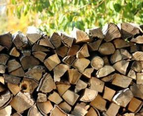 Covid-19 : SFCB écrit au nouveau gouvernement pour sauver la filière bois-énergie
