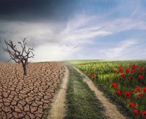 La Banque des Territoires et Bpifrance lancent un Plan Climat de 40 milliards d'euros
