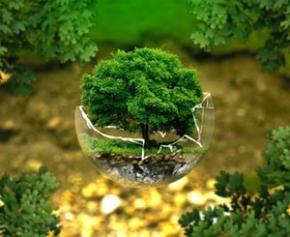 Le Groupe Velux s'engage pour une neutralité carbone à vie » en partenariat avec...