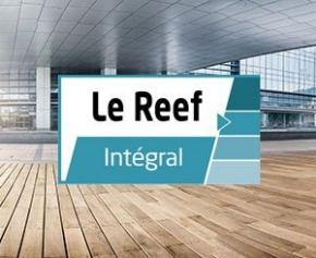 The Reef Integral: a reliable, complete, useful and recognized service