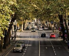 Climate law: The government continues to green the vehicle fleet ...