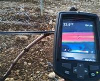 Proteplan, le câble chauffant de Prysmian Group pour protéger les vignobles du gel