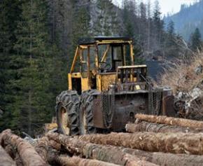 « Peut-on se passer de bois ? » : la filière dénonce un amalgame permanent...
