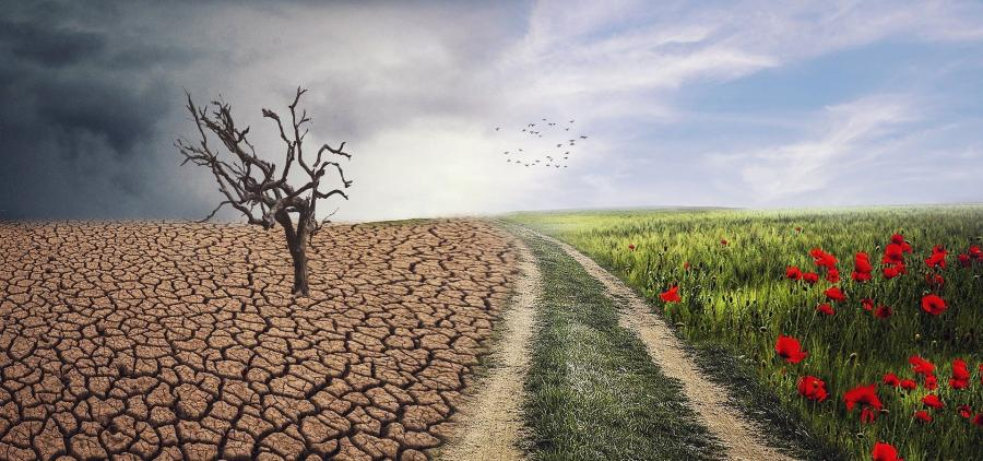 """After the recovery, the need to """"change the system"""" to respond to the climate emergency"""