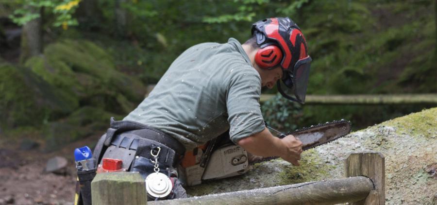 Malgré la pénurie, le bois reste une priorité du BTP pour réduire les émissions carbone