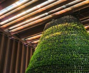 Ouverture du Pavillon des Pays-Bas à l'Expo de Dubaï, alimenté en...