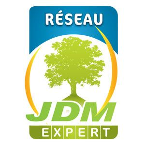 by JDM Expert