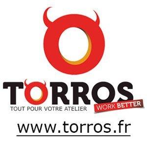 Torros: Logo