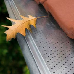 Leaf guard grid
